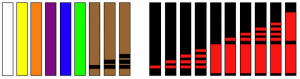 ranks_belts2